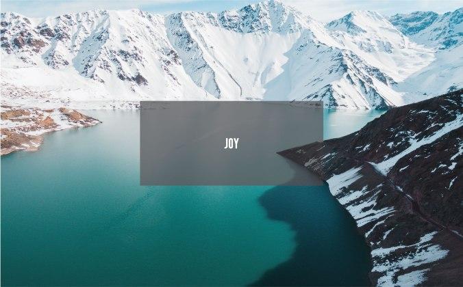 Joy_Cover Photo